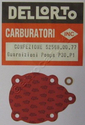 P30.P1 Pump gasket set